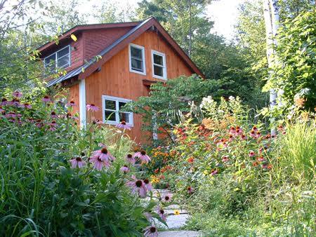 House Flowers Tree Walkway