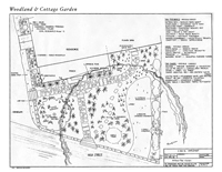 Woodland and Cottage Garden Blueprint