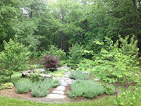 Goshen Stone walkway is flanked by trees, flowers and shrubs.